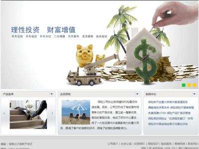 保险公司网站