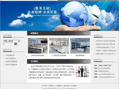 专业技术服务公司网站